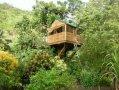 cabane dans les arbres anse d'arlet